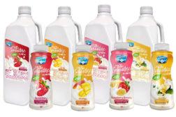 Dairy Packaging Yogurt