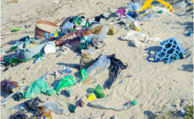 P&G to produce shampoo bottle made of beach plastic