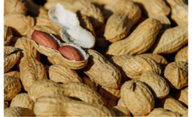 The Allergy Epidemic Effect on Food Manufacturing