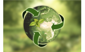 Online Poll Results: Improving Sustainability