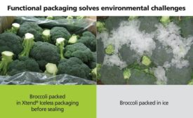 Broccoli Moves from Ice Age to Fresh Packaging