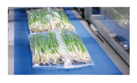 Fresh Produce Packaging Set Up for Automation