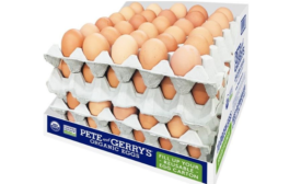 Reusable Egg Carton Is Made from Recycled Materials