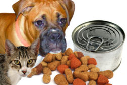 Food & Beverage Packaging Pet Food