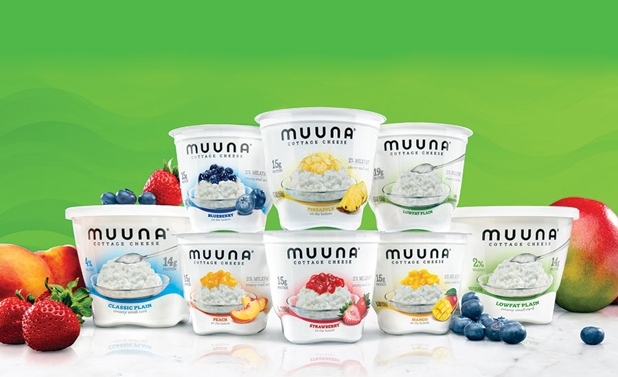 Muuna's flavored cottage cheese cups