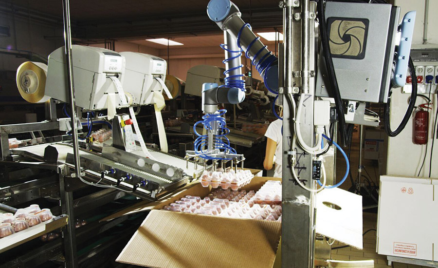 Automated egg handling | 2017-08-22 | Packaging Strategies