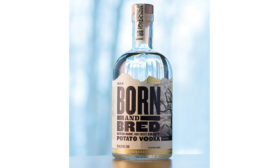 Born and Bred's bottle is shorter and wider