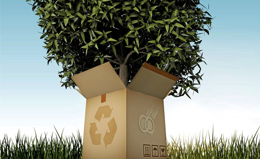 Continued Innovations in Sustainable Packaging