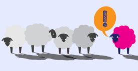 sheep graphic pink