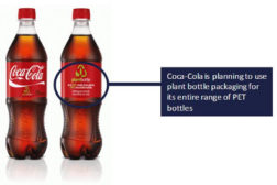Coca Cola Plant Bottle