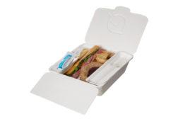 Sugarcane Foodservice packaging