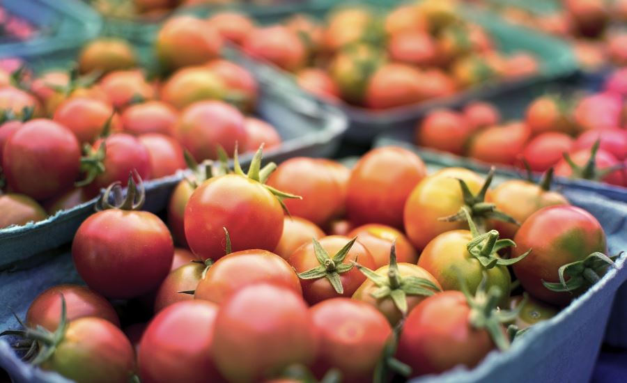 4 Fresh Produce Applications Where Retail-Ready Packaging Is Gaining Ground