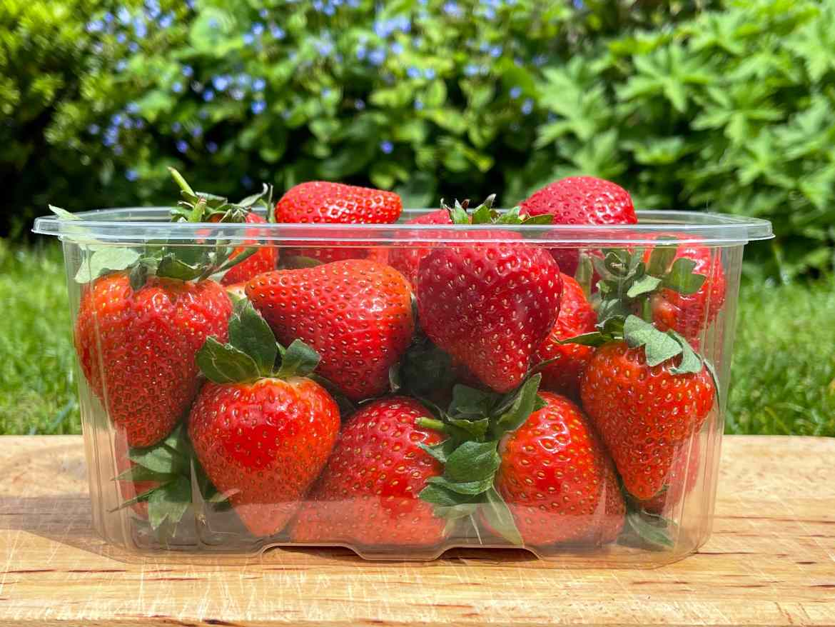 Waddington Europe and Produce Packaging Switch to 100% rPET Containers