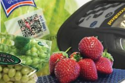 Dri-fresh resolve fruit cushion, produce packaging, QR codes, interactive package