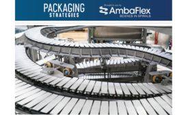 AmbaFlex eBook Main Image
