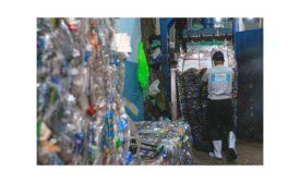 Cairo recycling center